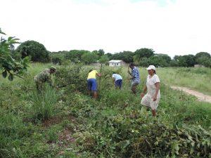 Soldados del Batalló General Efraín Rojas Acevedo realizando labores de mantenimiento en la comunidad Cumariana