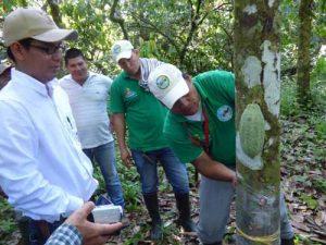 Foto: cortesía Gobernación de Guainía