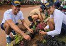 La Armada Nacional sembró más de quince mil árboles en Puerto Carreño, Vichada