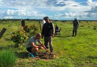 Fuerza Aérea Colombiana lidera campaña de reforestación en Vichada