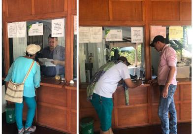 El ICA invita a los ganaderos del Vichada a expedir sus Guías Sanitarias de Movilización Interna de Animales