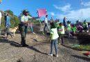 [Fotos] Desde el Cerro de La Bandera se elevaron cometas en honor al Bicentenario