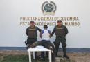 Capturan en Cumaribo a una persona que tenía en su poder un oso hormiguero muerto