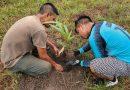 1.000 árboles fueron plantados como iniciativa de reforestación y lucha contra el cambio climático en Inírida