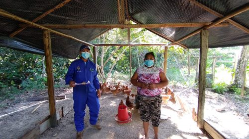 Gobernación de Guainía entregó kits de pesca y gallinas ponedoras a campesinos e indígenas - Noticias de Colombia