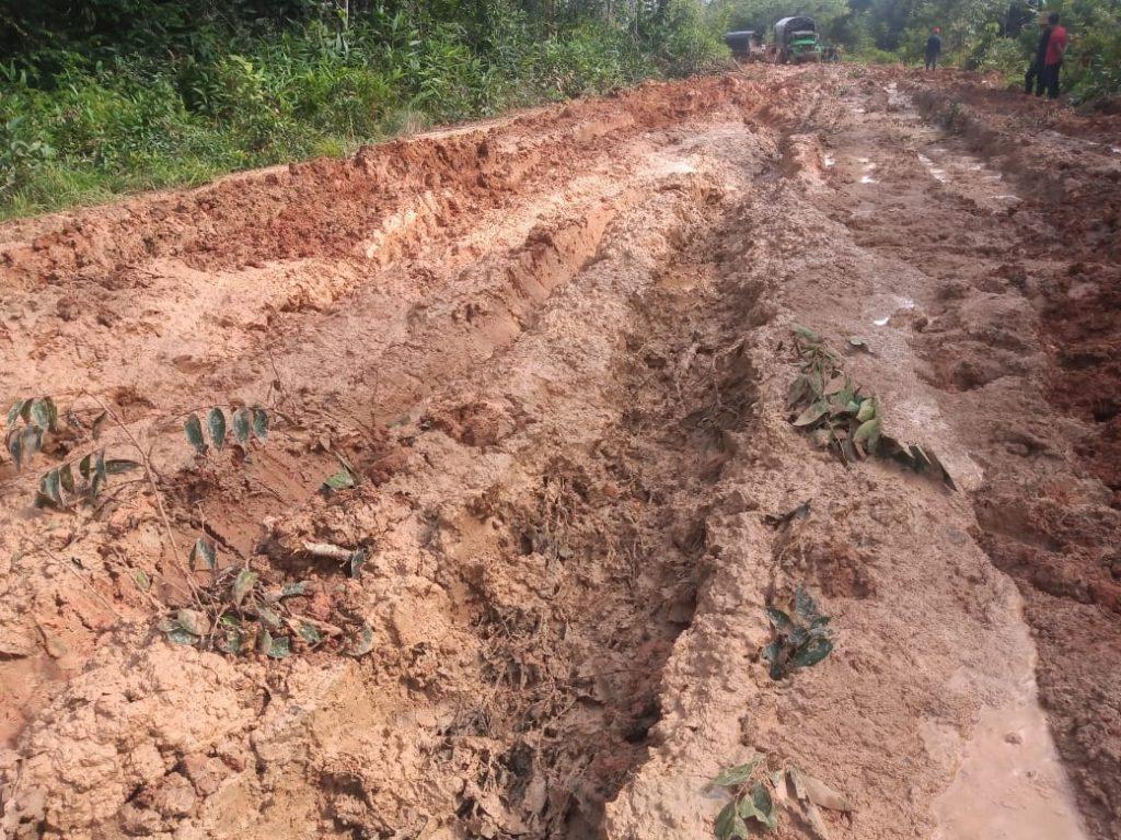 El mal panorama de la única carretera que tiene el sur del Guainía - Noticias de Colombia