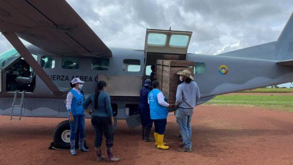 En La Primavera, animales silvestres fueron devueltos a su habitad natural - Noticias de Colombia