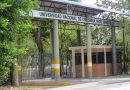 Unal: pines gratis para jóvenes de Guainía y Vichada